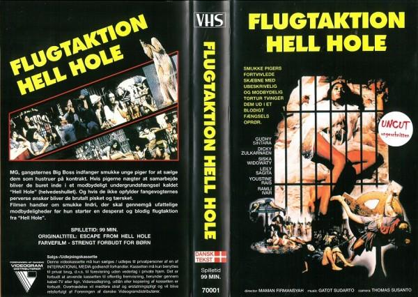 Flugtaktion Hell Hole - Inferno der gequälten Dirnen - Escape from Hell Hole (Videogram DK Import)