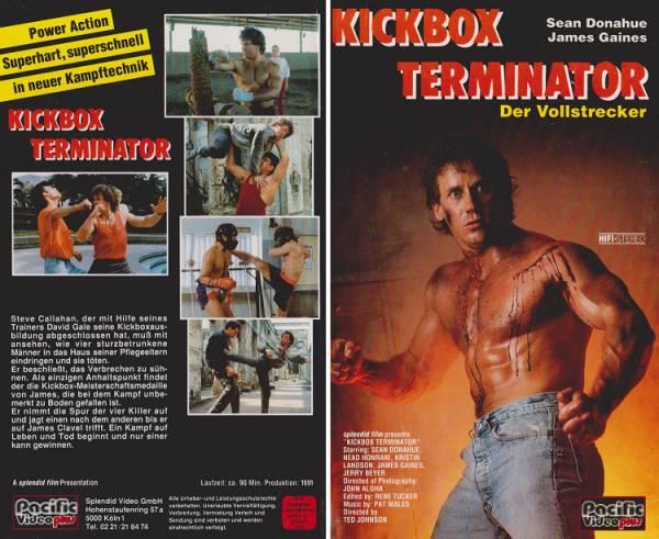 Kickbox Terminator - Der Vollstrecker